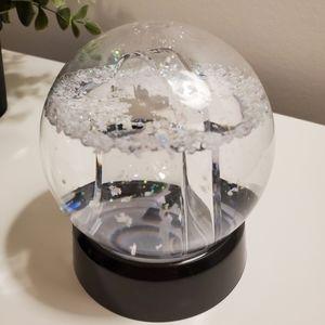 🌺 3/25 Picture frame snow globe, black base